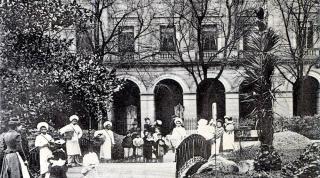 La palmera casi recién plantada hacia 1902
