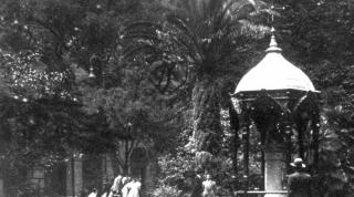 La palmera en 1927