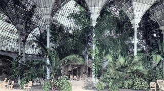 """El Palmarium de Pau. Estaba adjunto al Casino y dentro de él tenía una gran mesa del juego llamado """"los caballitos""""."""
