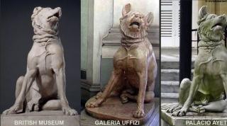 Comparativa de perros molosos con los de Aiete